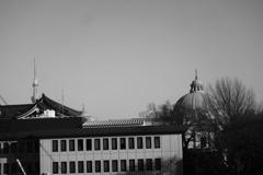 窓からの風景(おまけ)