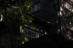 旧古河庭園 午後の陽差し
