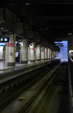 帰るぜ!東京 上野駅ホーム