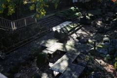 木漏れ日の親水公園