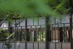 七社神社 渡り廊下
