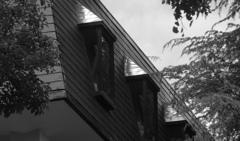 松本楼の小窓