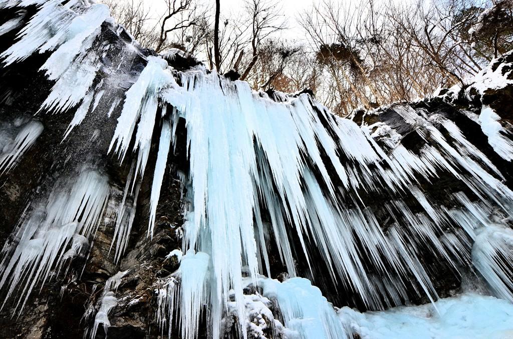 冬のスッカン沢は氷瀑