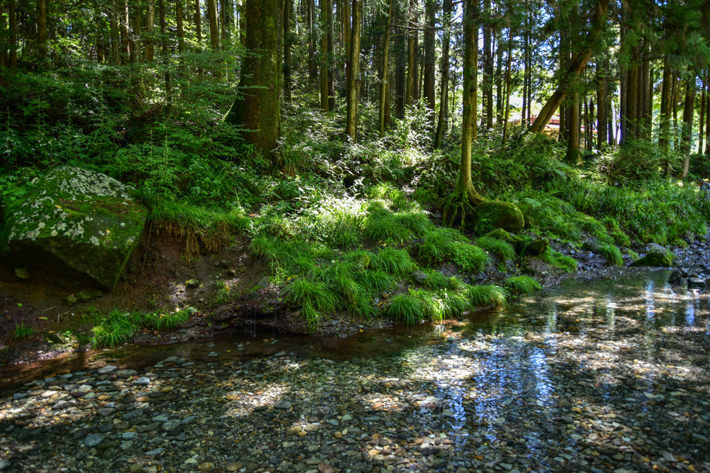 谷間の流れ
