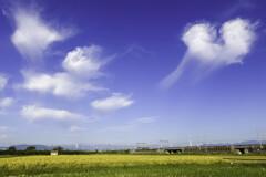 秋空に雲のハート