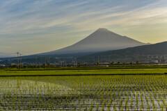 いつかの富士山
