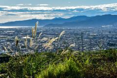 裏山から見た風景