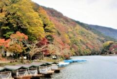 嵯峨嵐山  散策~保津川下り