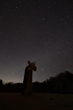流星群の夜に