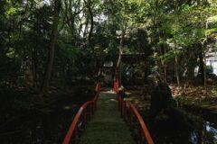 新緑の神社