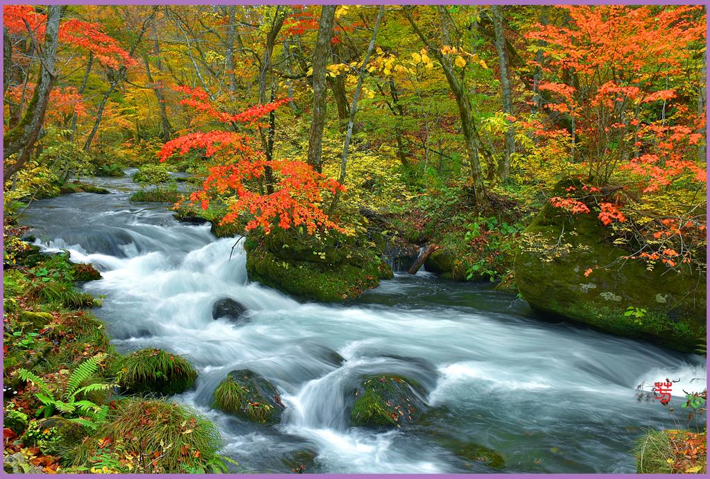 奥入瀬渓流「下.石ヶ戸の流れ」