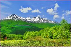 八甲田山「残雪と若葉」