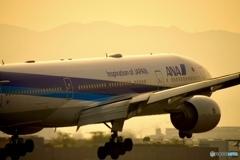 夕暮れの飛行機①