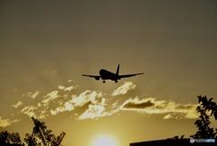 夏の夕日の2018…✈︎