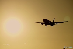 sunset flight ✈︎