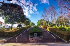 どちらの坂道を登っても見える景色は同じ。