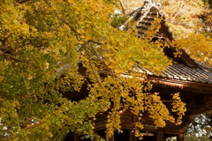 秋色の西連寺