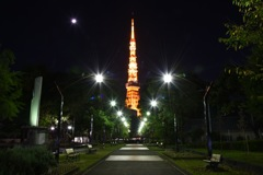 東京タワー定番?