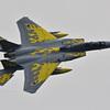 306飛行隊創隊40周年記念塗装機_04