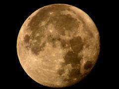 十五夜、そう満月です!