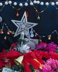クリスマス ムード高める 花売場