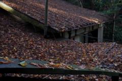 茶屋の屋根 紅葉積もりて 冬迎ふ