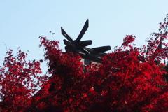 逆光の 神社本殿 赤と黒