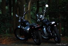 妻と私とオートバイ