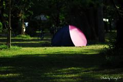 ももいろテント
