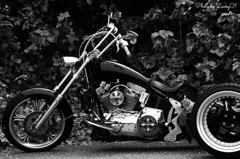 Trike for Harley-Davidson