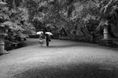 雨が似合う人
