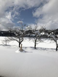 雪がやみ春遠く