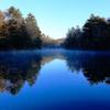 雲場池の朝2
