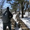 雪の上の木道