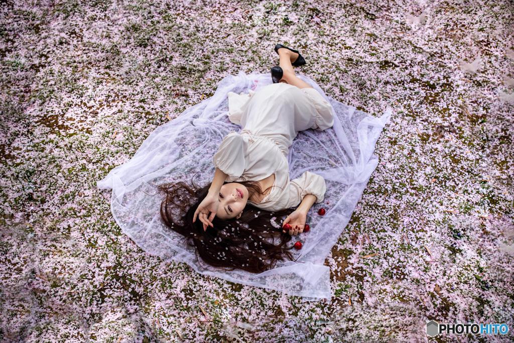 花びらに囲まれて