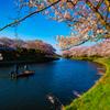 春を漕いで