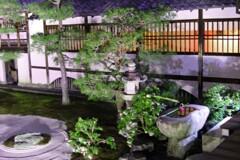 妙顕寺 ライトアップ