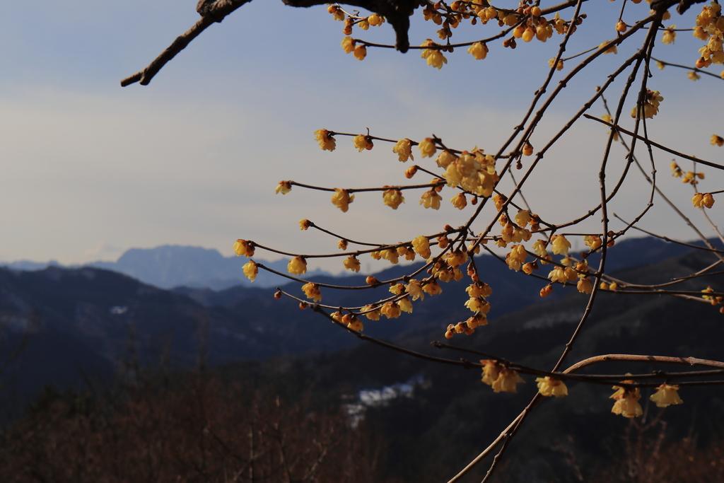 両神山を望む