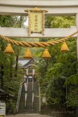 雨の宝登山神社