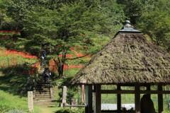 秋の仏隆寺 4