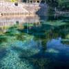 湧き水の透明感
