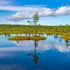 湿地の青い空