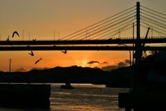 尾道大橋と朝陽