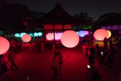 下賀茂神社 光の祭