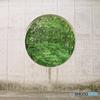 円に緑の写真
