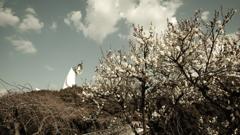 梅林の向こうからチラ見する 太陽の塔