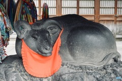 牛嶋神社 撫で牛