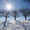 冬のスケッチ 2