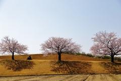 春を 行く ♪
