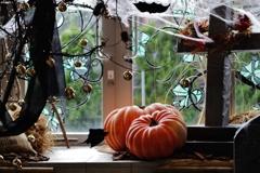 Halloween ♪